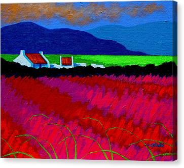 Magenta Meadow Canvas Print by John  Nolan
