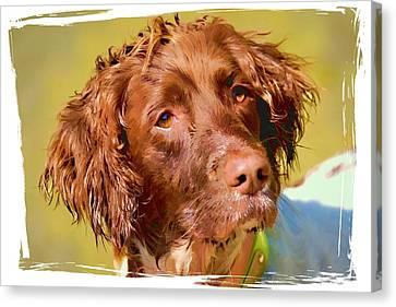 Maggie Head 3 Canvas Print
