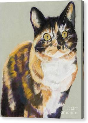 Maggie Mae Canvas Print by Pat Saunders-White