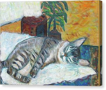 Maggie Sleeping Canvas Print by Carolyn Donnell