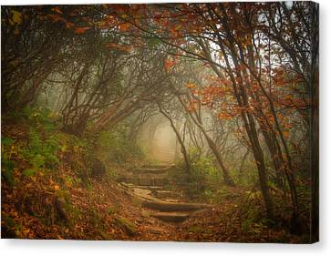 Canvas Print featuring the photograph Magic Forest by Joye Ardyn Durham