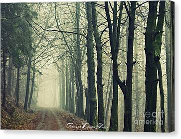 Magic Forrest Canvas Print by Sacred  Muse