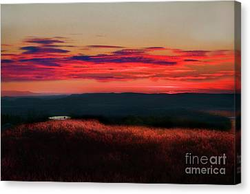 Magic Hour At Dolly Sods On Canyon Rim Trail Canvas Print by Dan Friend