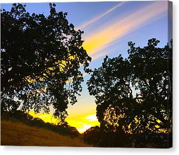 Magic Hour Sunset Canvas Print