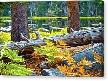Magic Light Lake Canvas Print