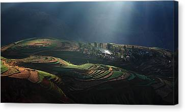Magic Morning Canvas Print by Winters Zhang
