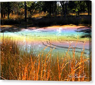 Magic Pond Canvas Print by Melissa Wyatt