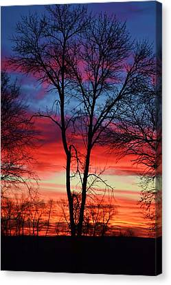 Magical Colors In The Sky Canvas Print by Dacia Doroff