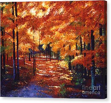 New England Autumn Canvas Print - Magical Forest by David Lloyd Glover