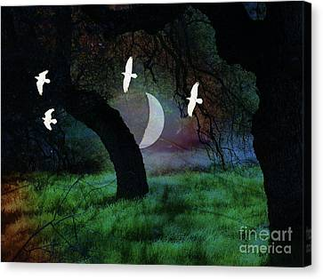 Magical Forest Night Canvas Print by Robert Ball
