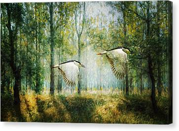 Magical Forests Impressionism Canvas Print