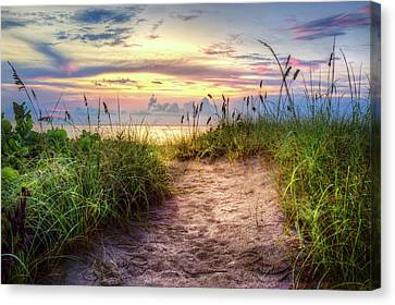 Canvas Print featuring the photograph Magical Light In The Dunes by Debra and Dave Vanderlaan