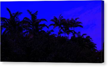 Magical Miami Canvas Print by Lessandra Grimley