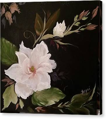 Arcylic Canvas Print - Magificent Magnolia by Jacqueline Whitcomb