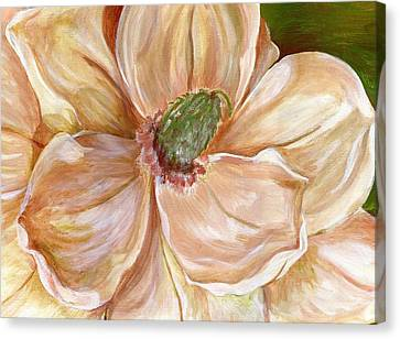 Magnificent Magnolia -1 Canvas Print by Sheron Petrie