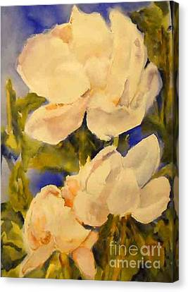 Magnolia Blooms Canvas Print