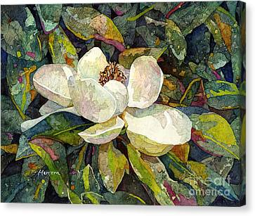 Magnolia Blossom Canvas Print by Hailey E Herrera