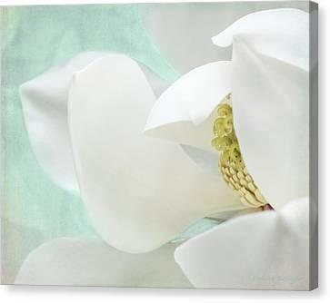 Magnolia Blossom, Soft Dreamy Romantic White Aqua Floral Canvas Print