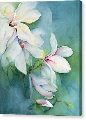 Magnolia Dedudata Canvas Print by Karen Armitage