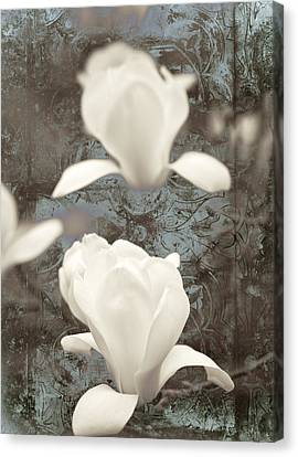 Pattern Canvas Print - Magnolia by Frank Tschakert