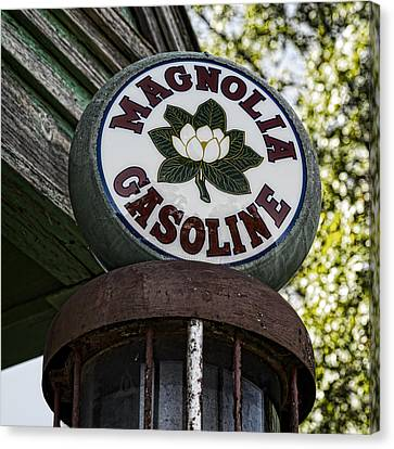 Magnolia Gasoline 2 Canvas Print by Stephen Stookey