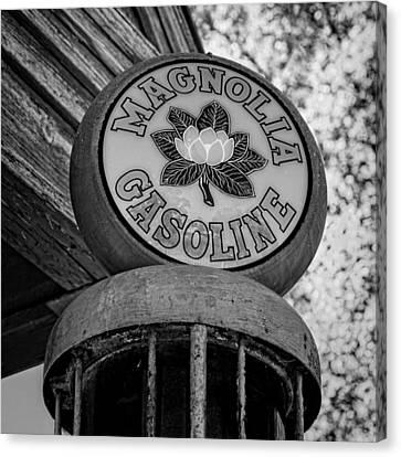 Magnolia Gasoline 3 Canvas Print by Stephen Stookey