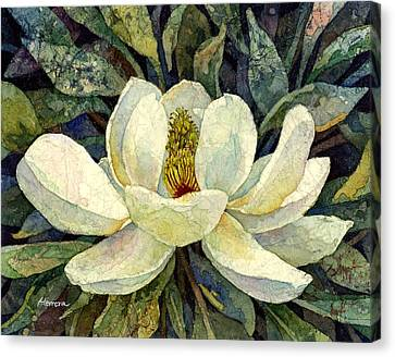 Magnolia Grandiflora Canvas Print by Hailey E Herrera