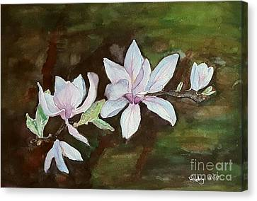 Magnolia - Painting  Canvas Print by Veronica Rickard