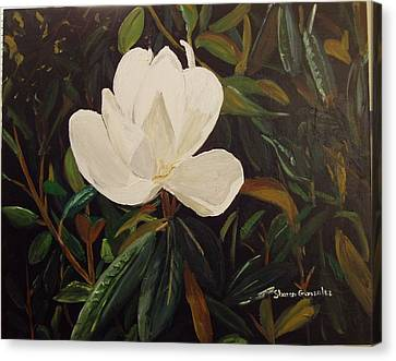 Magnolia Canvas Print by Sharon  De Vore