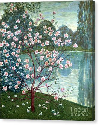 Magnolia Canvas Print by Wilhelm List