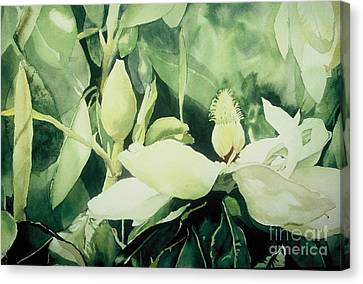 Canvas Print featuring the painting Magnolium Opus by Elizabeth Carr