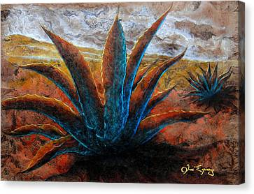 Maguey Canvas Print