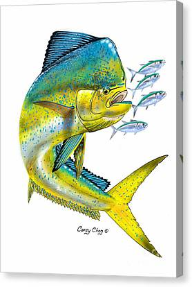 Aquatic Canvas Print - Mahi Digital by Carey Chen