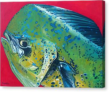 Canvas Print - Mahi Mahi by Jon Ferrentino