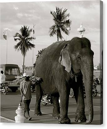 Canvas Print featuring the photograph Mahout And Elephant by Louise Fahy