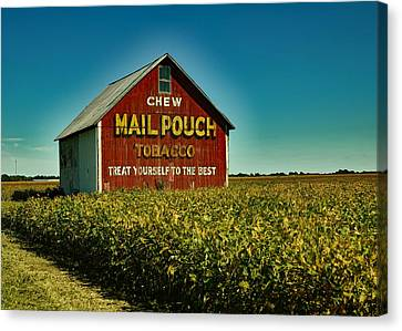 Mail Pouch Tobacco Barn Canvas Print by Mountain Dreams