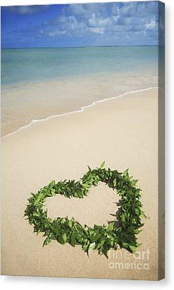 Maile Lei On Beach II Canvas Print by Brandon Tabiolo - Printscapes