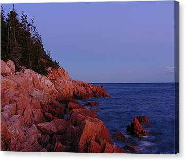 Maine Acadia Np  Canvas Print