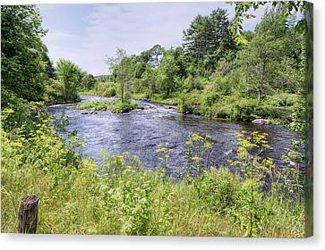 Canvas Print featuring the photograph Maine Beauty by John M Bailey