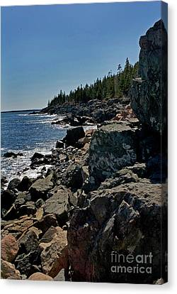 Maine Coast Canvas Print by Skip Willits
