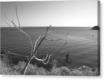 Canvas Print featuring the photograph Maine Coastline by Corinne Rhode