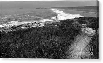 Rocky Maine Coast Canvas Print - Maine Contemplation by Olivier Le Queinec