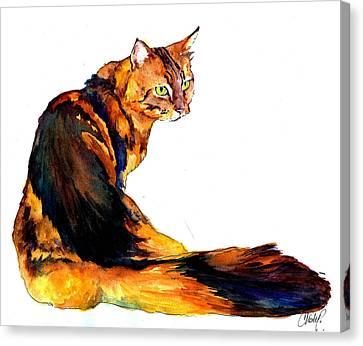Maine Coon Cat Portrait Canvas Print by Christy  Freeman