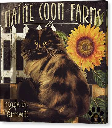 Maine Barns Canvas Print - Maine Coon Farms by Mindy Sommers