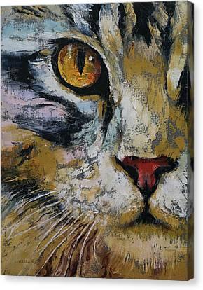Maine Coon Canvas Print by Michael Creese