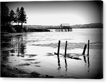 Canvas Print - Maine Reflections by Catherine Reusch Daley