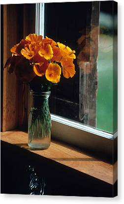 Maine Windowsill Canvas Print by Laurie Paci