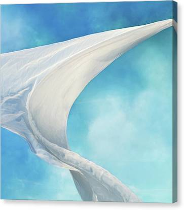 Sail Cloth Canvas Print - Mainsail  by Laura Fasulo