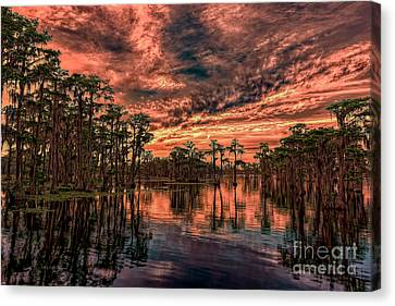 Majestic Cypress Paradise Sunset Canvas Print