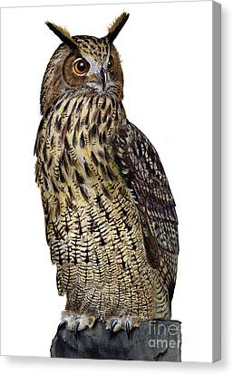 Canvas Print featuring the painting Majestic Eurasian Northern Eagle Owl Bubo Bubo - Hibou Grand-duc - Buho Real - Nationalpark Eifel by Urft Valley Art